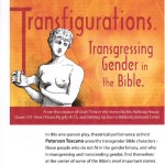 Transfigurations Poster